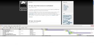 Screenshot: Netzwerk Inspektor